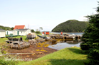 Placentia Bay Resettlement Today 2013  (19)
